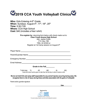 volleyball clinic flyer